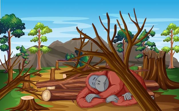 Verontreinigingsscène met chimpansee en ontbossing