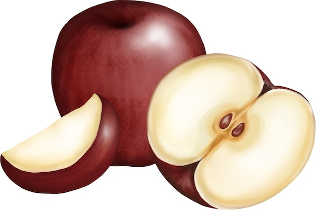 Vers appelfruit tekening illustratie