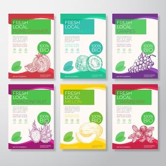 Vers lokaal fruit en bessen etiketten verpakking ontwerp lay-out collectie vector achtergrond covers set