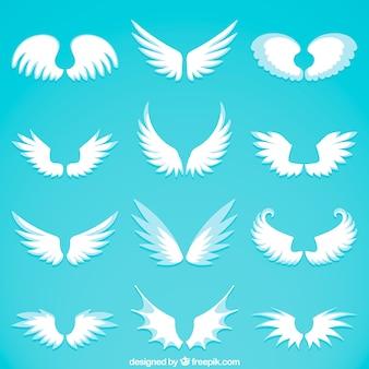 Verscheidenheid aan grote vleugels in vlakke vormgeving