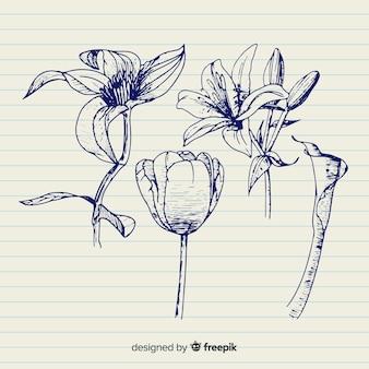 Verscheidenheid van bloemen in de hand getekende ontwerp