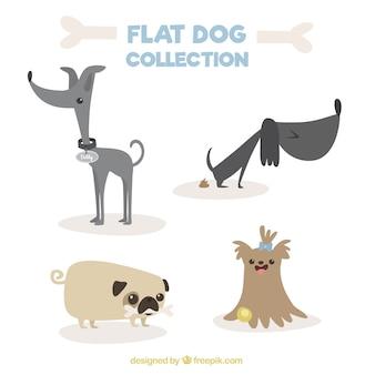 Verscheidenheid van fantastische honden in plat design