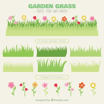 Verscheidenheid van gras met bloemen