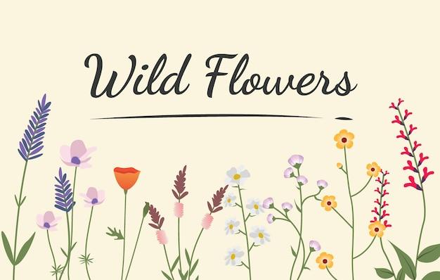 Verscheidenheid van wilde bloemen illustratie