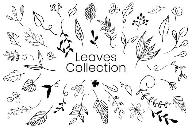 Verschillende bladeren doodle collectie vector