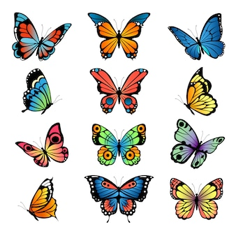 Verschillende cartoon vlinders. set illustraties vlinders