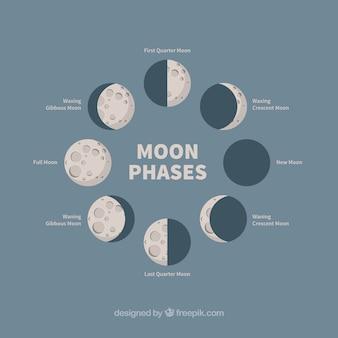 Verschillende fasen van de maan