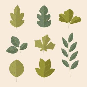 Verschillende groene bladeren instellen plat ontwerp