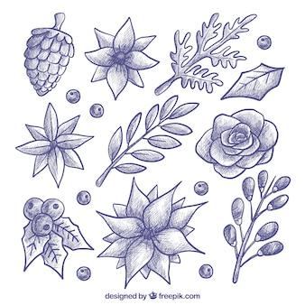 Verschillende hand getekende bloemen en planten