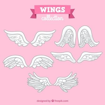 Verschillende handgetekende vleugels
