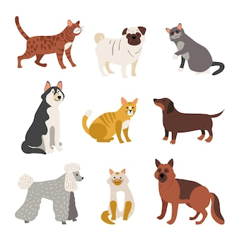 Verschillende huisdierenassortiment