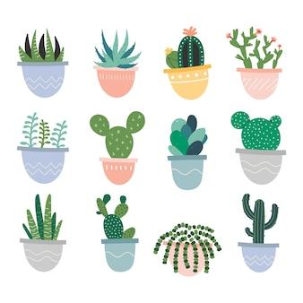 Verschillende kamerplanten in potten
