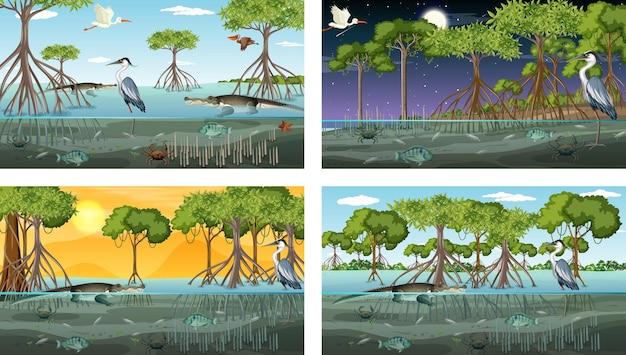 Verschillende mangroveboslandschapsscènes met dieren Gratis Vector