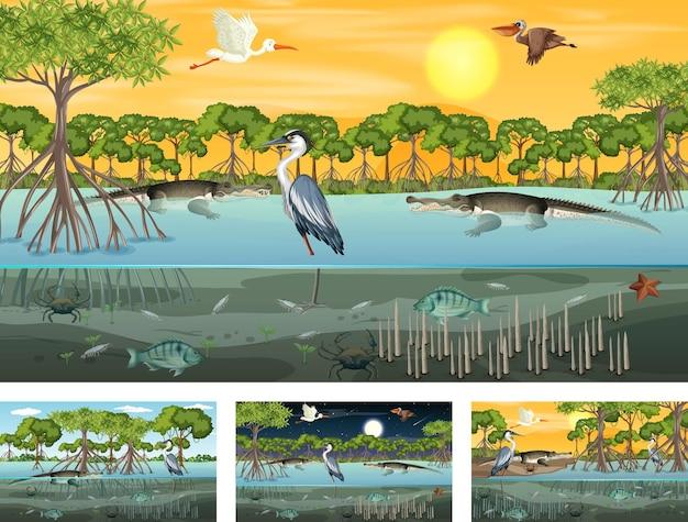 Verschillende mangroveboslandschapsscènes met verschillende dieren