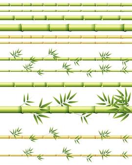 Verschillende maten bamboestengels met en zonder bladeren