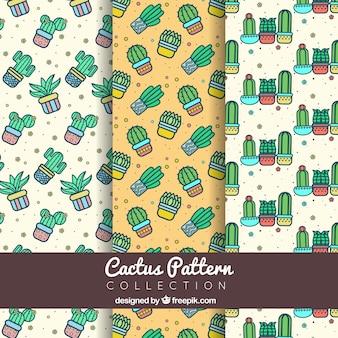 Verschillende patronen van decoratieve cactussen