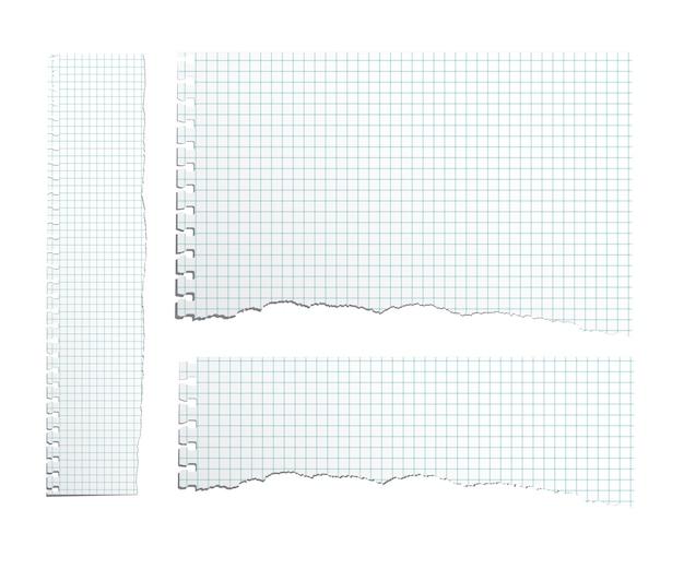 Verschillende proportie gescheurde voorbeeldenboek papieren vellen ingesteld.
