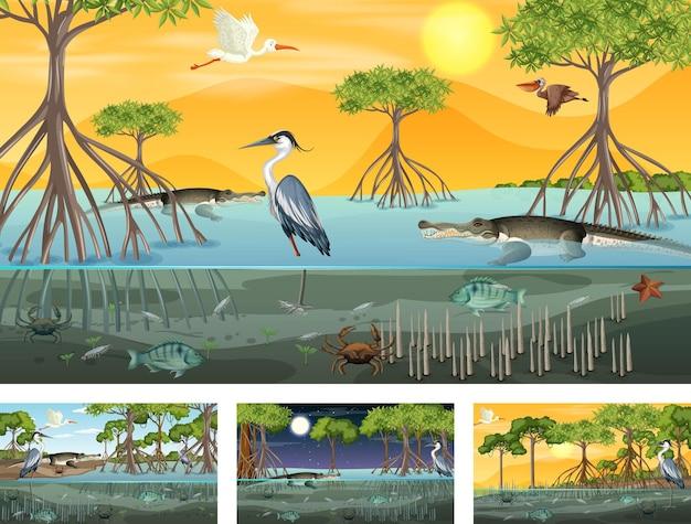 Verschillende scènes met mangroveboslandschap met dieren en planten