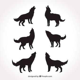 Verschillende silhouetten van wolven