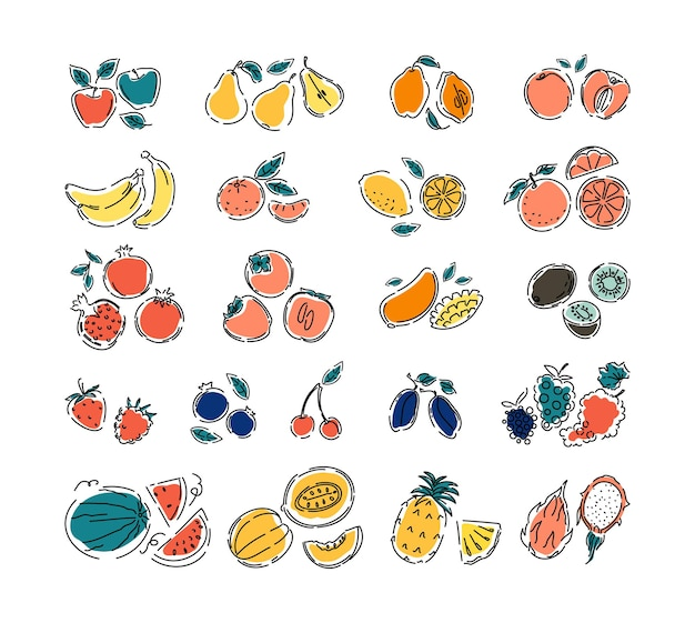 Verschillende soorten fruit en bessen op een witte geïsoleerde achtergrond grote set natuurlijk tropisch fruit