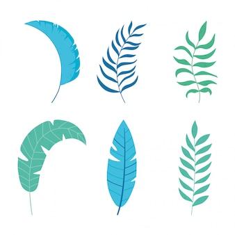 Verschillende tropische bladeren gebladerte botancial aard pictogrammen geïsoleerd