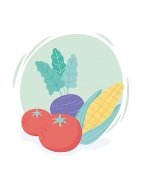 Verse cartoon biologische groenten maïs tomaten en aubergine