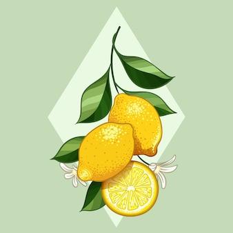 Verse citrusvruchtencitroen met bladerenontwerp