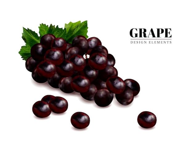 Verse druiven elementen, close-up kijken naar vers fruit geïsoleerd
