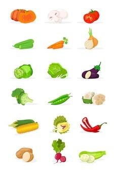 Verse groenten set hele en gesneden pompoen aardappel kool ui bloemkool