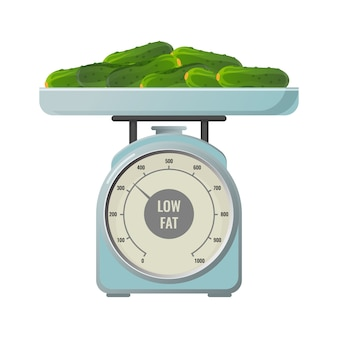 Verse komkommers met laag vetgehalte bevatten mechanische schalen met ronde schaal. gezonde biologische groenten op weger geïsoleerde realistische flat.