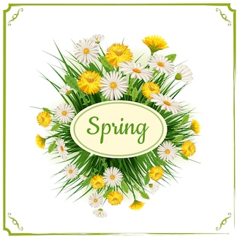Verse lente achtergrond met gras, paardebloemen en madeliefjes. vector