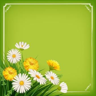 Verse lente achtergrond met gras, paardebloemen en madeliefjes Premium Vector