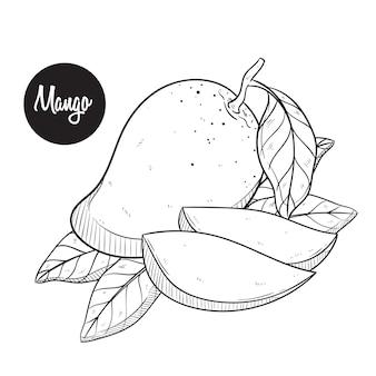 Verse mangoschets of handtekeningvector
