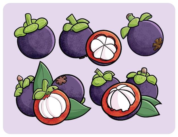 Verse mangosteencollectie in cartoonstijl