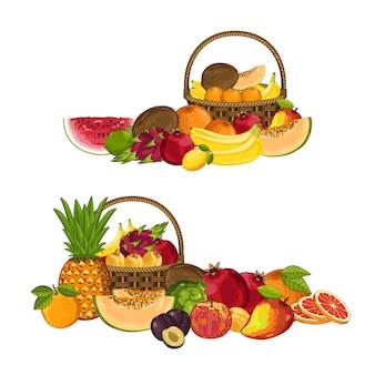 Verse organische fruit geïsoleerde samenstelling