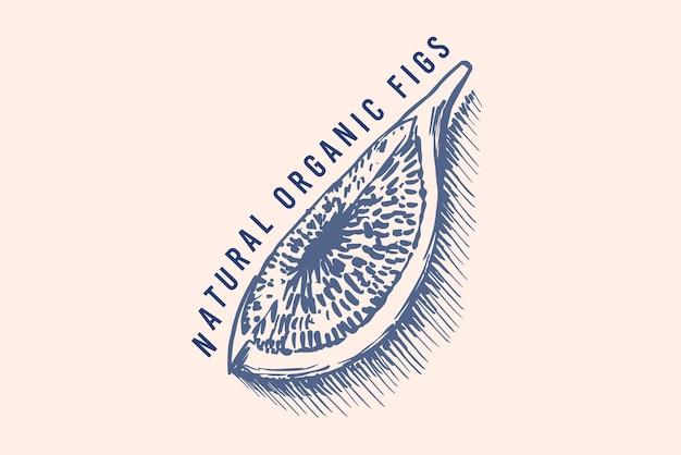 Verse vijgen badge. gedroogd fruit gebladerte label of logo. snijd stukjes. detox kruiden.