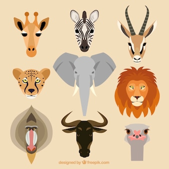 Verzameling afrikaanse dieren
