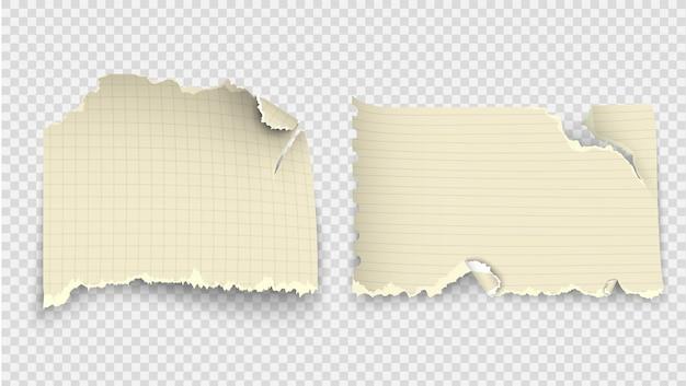 Verzameling elementen transparant ontwerp gescheurde sjablonen gescheurd papier.