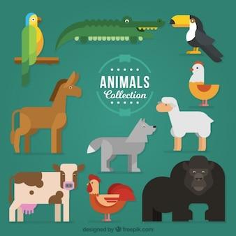 Verzameling kleurrijke dieren in geometrische stijl