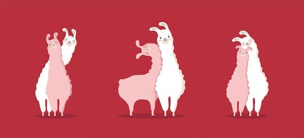 Verzameling lama in liefde