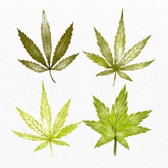 Verzameling van aquarel cannabis bladeren
