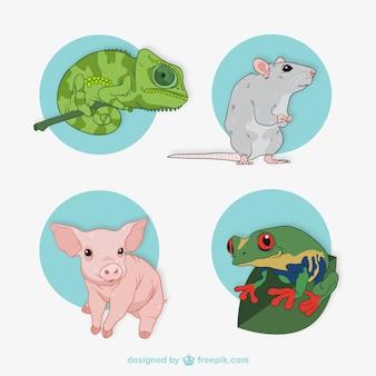 Verzameling van dierlijke illustraties