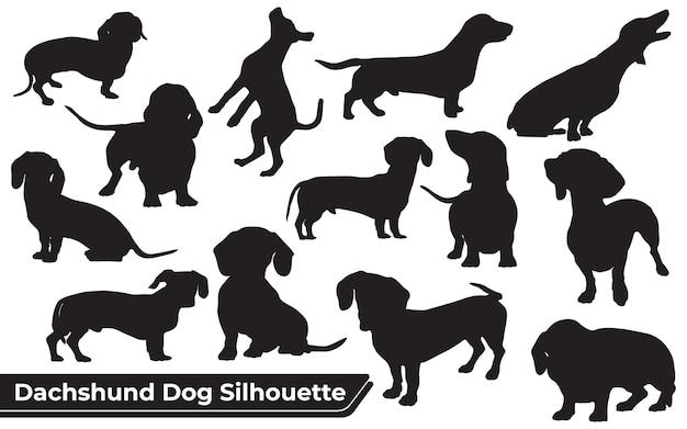 Verzameling van dierlijke teckelhond in verschillende posities