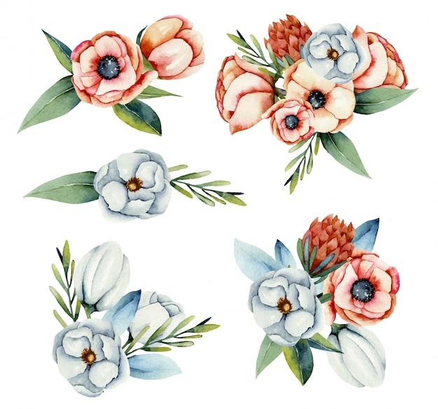 Verzameling van geïsoleerde aquarel boeketten van witte en koraal anemoon en protea bloemen, handgeschilderde illustratie
