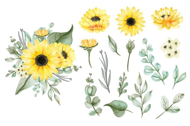 Verzameling van geïsoleerde aquarel gele zonnebloemen en bladeren