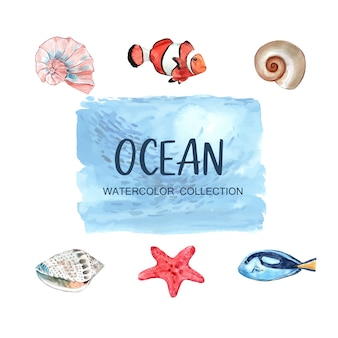 Verzameling van geïsoleerde elementen van zeedier