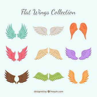Verzameling van gekleurde vleugels