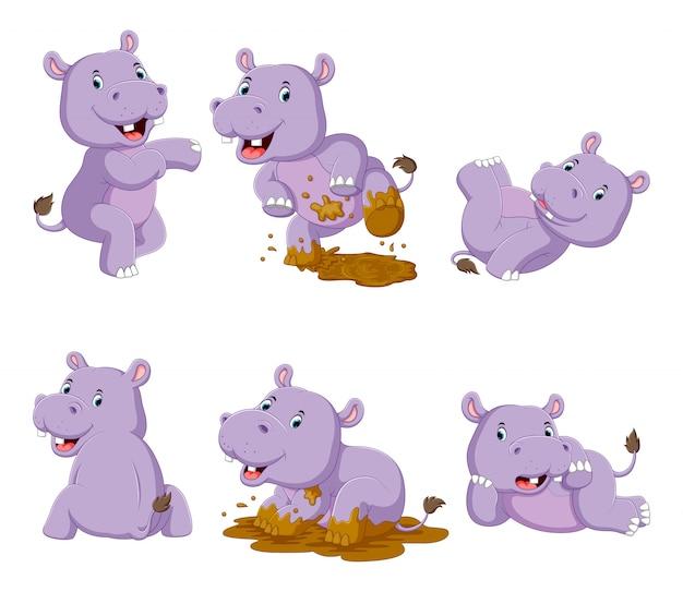 Verzameling van gelukkig nijlpaard met verschillende poseren