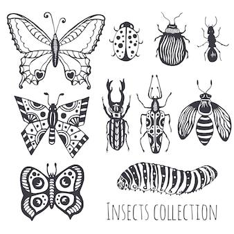 Verzameling van hand drawind insecten, leuke set van decoratie voor ontwerp, pictogrammen, logo of afdrukken. vector illustratie.