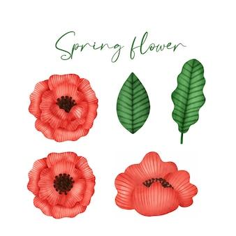Verzameling van hand getrokken aquarel lentebloem